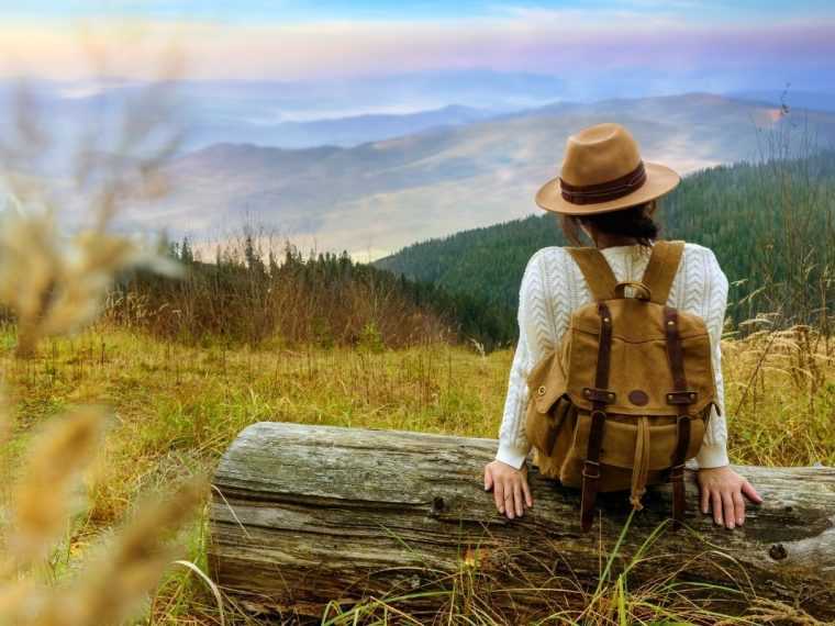 A lady sat on a log looking at a mountain