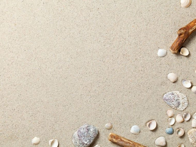 Beach with shells